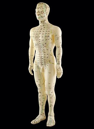 Modelo anatómico de la medicina tradicional china: los canales y puntos en que se aplican acupuntura y shiatsu.